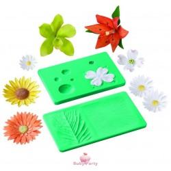 Stampi per venature di foglia e fiore