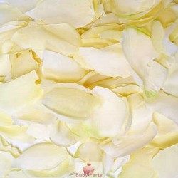 Petali di tessuto avorio 288 pz per eventi e cerimonie