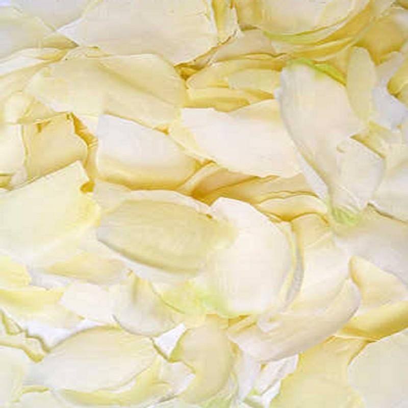 288 Petali Di Rosa In Tessuto Avorio Per Eventi E Cerimonie